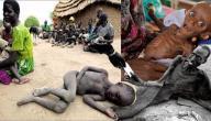 تعريف المجاعة