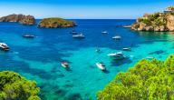 ما هو بحر الروم