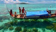 جزيرة سيبادان