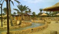 مقال قصير عن السياحة في المملكة العربية السعودية