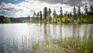 عدد البحيرات في السويد