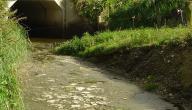 ما هو تلوث الماء