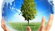 تعبير عن حماية البيئة من التلوث