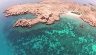 جزيرة عمانية