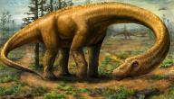 هل الديناصورات حقيقة
