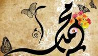 صفات الرسول محمد الجسدية