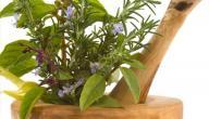الأعشاب التي ترفع ضغط الدم