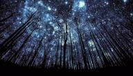 لماذا لا نرى النجوم في النهار