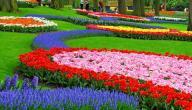 ما هو فصل الربيع