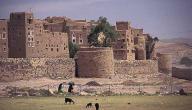 مدينة عمران