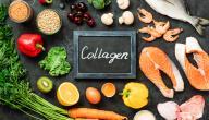 فوائد الكولاجين للعظام