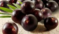 فوائد فاكهة الأساي