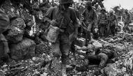 ما هي أسباب الحرب العالمية الاولى