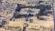 كم دولة تحيط بفلسطين
