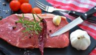فوائد لحم الإبل لجسم الإنسان