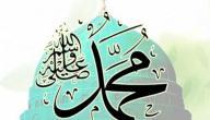 كم رمضان صامه النبي