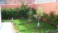 كيفية المحافظة على حديقة المنزل