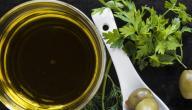 فوائد زيت الزيتون الدافئ للشعر