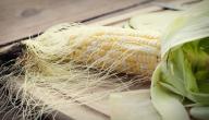 فوائد شباشيل الذرة