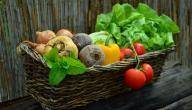 فوائد الفواكه والخضروات للحامل