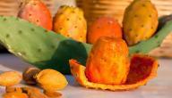 فوائد ثمار التين الشوكي
