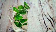 فوائد الماء مع النعناع