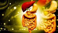 أمراض جهاز الهضم