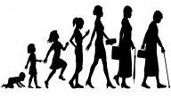 مراحل نمو الإنسان في علم النفس