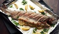طريقة عمل صينية سمك قاروص