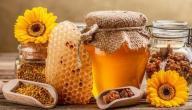 فوائد غذاء الملكات وحبوب اللقاح مع العسل
