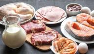 ما أهمية الدهون في خلايا وجسم الكائنات الحية