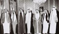 معلومات عن قيام دولة الإمارات