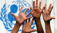 منظمة حماية حقوق الطفل الدولية