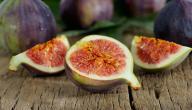 معلومات عن ثمرة التين