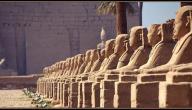 معلومات عن مدينة الأقصر ومدينة أسوان