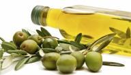 أضرار وفوائد زيت الزيتون