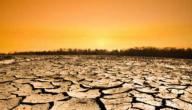 ما نتائج الاحتباس الحراري