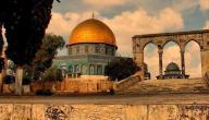 معلومات ثقافية عن فلسطين