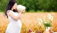 فيتامين د أثناء الحمل