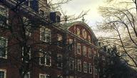 ما هي أفضل جامعة في العالم