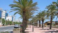 مدينة نابل في تونس