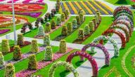 مدينة الزهور في إندونيسيا