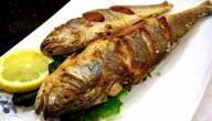 طرق طبخ سمك الهامور