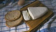 تحضير الجبنة البلدية
