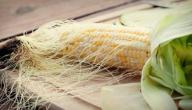 فوائد شعر الذرة للكلى