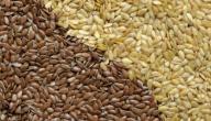 كيفية استخدام بذرة الكتان لتخفيف الوزن