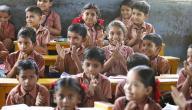 مراحل تطور مهنة التعليم