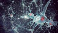 أعراض الاستسقاء الدماغي