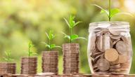 طرق اختيار الاستثمارات
