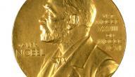 ماذا اكتشف نوبل